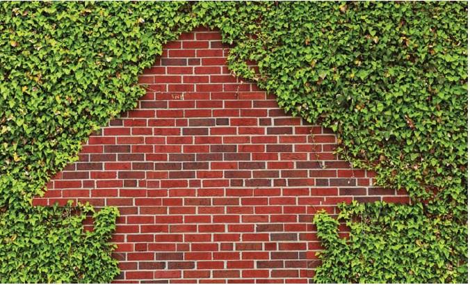 Investimenti Immobiliari Sostenibili
