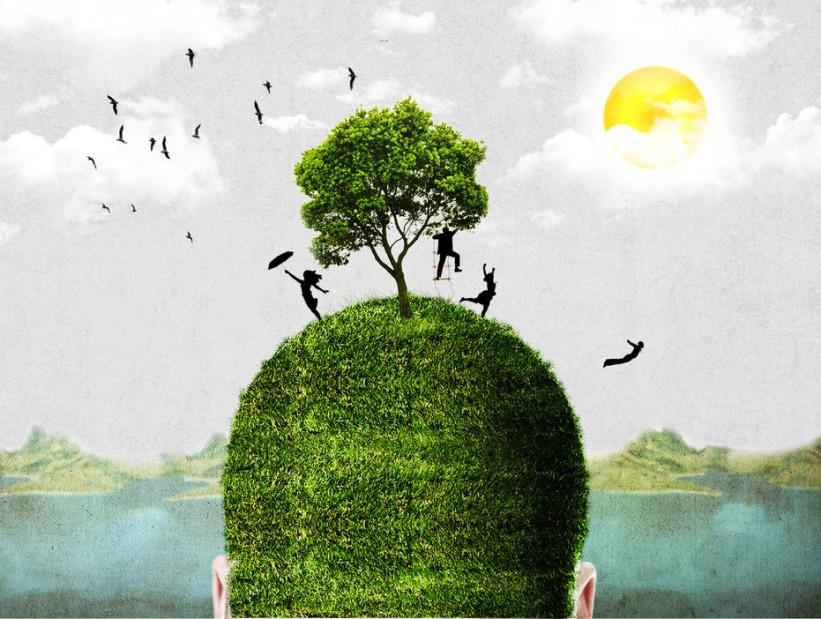 head_tree_by_tusar4rsd-d4qsc3m