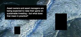 Investimenti sostenibili: un requisito fondamentale per gli asset manager