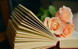 5 libri per l'estate: un piccolo catalogo di letture sostenibili